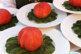Tomates recien recogidos del Huerto Urban